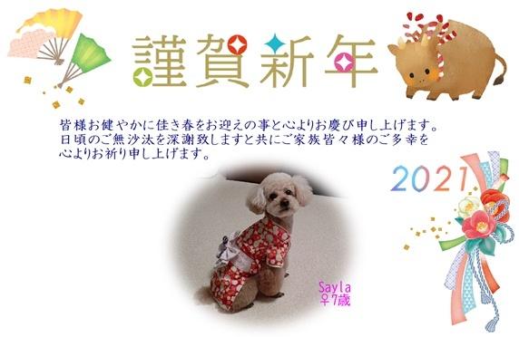 ブログ用年賀状.jpg